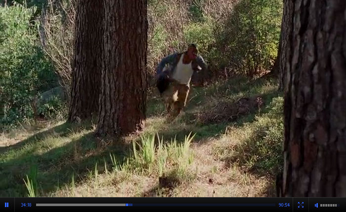 Смотреть онлайн кинофильм Свора / The Breed Ужасы-Триллер 2006 в хорошем качестве Бесплатно